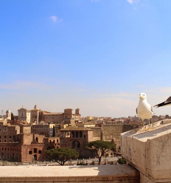 Willkommen in Rom – Fototagebuch
