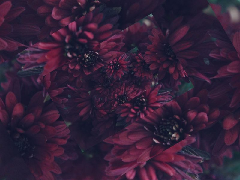 5 Prettiest Burgundy Fall Pieces